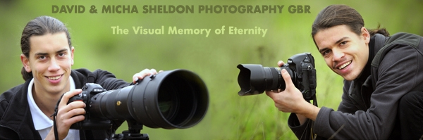 sheldon_photography2